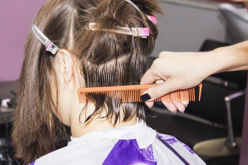 Il parrucchiere ha tagliato i capelli marroni nelle mani delle forbici e si pettina immagini stock libere da diritti