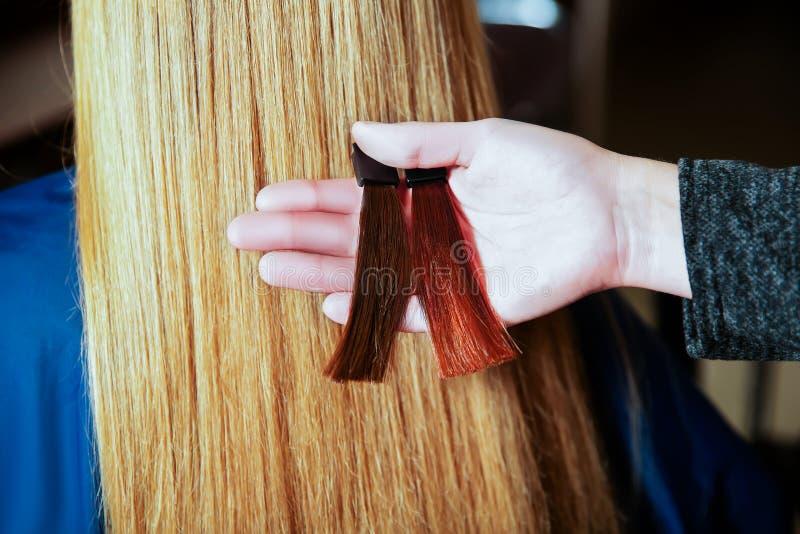 Il parrucchiere sceglie il colore dei capelli prima della tintura fotografia stock