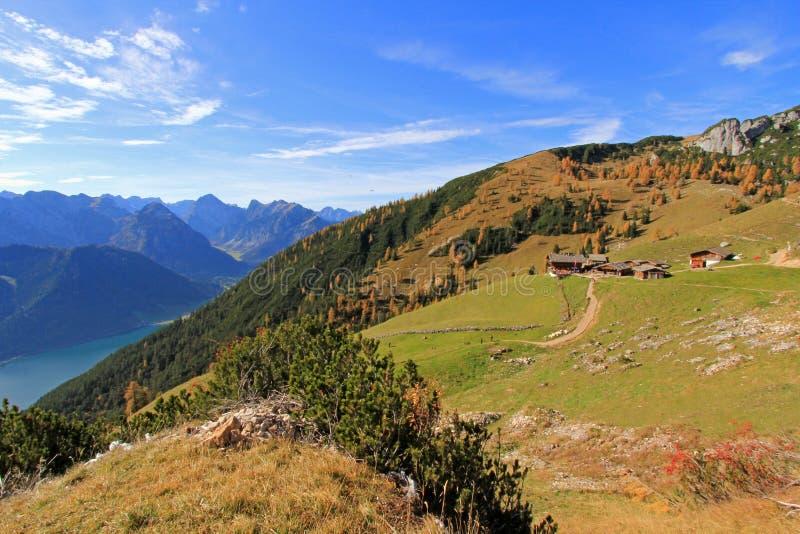 Il pascolo alpino di Dalfazalm in Austria fotografie stock libere da diritti