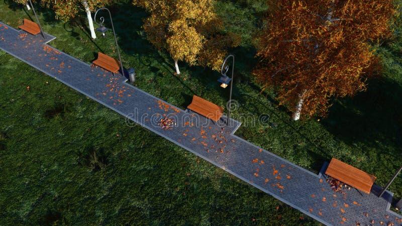 Il passaggio pedonale con i banchi vuoti in autunno parcheggia al crepuscolo immagine stock libera da diritti