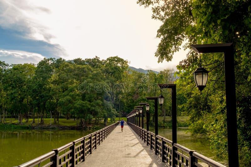 Il passaggio pedonale sopra l'intestazione del fiume nel parco fotografia stock