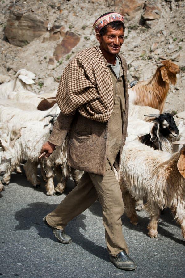 Il pastore Himalayan piombo la sua capra e le pecore si affollano fotografia stock