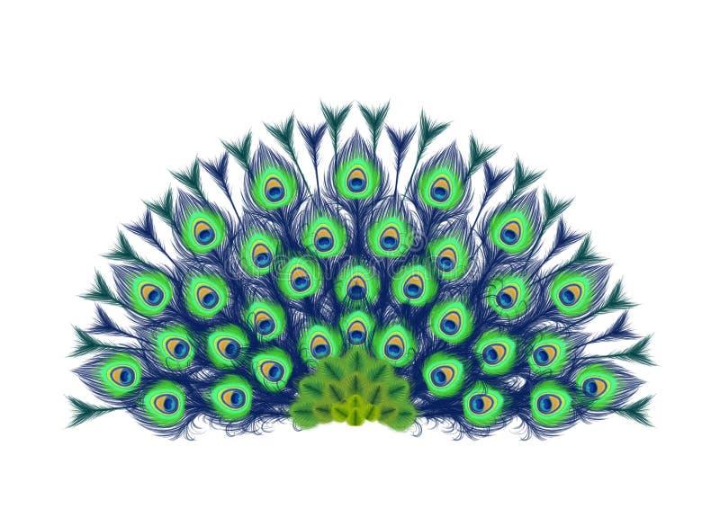 Il pavone mette le piume al fan royalty illustrazione gratis