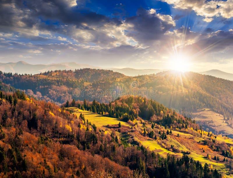 Il pendio di collina di autunno con gli alberi variopinti del fogliame si avvicina alla valle a sunse fotografia stock libera da diritti
