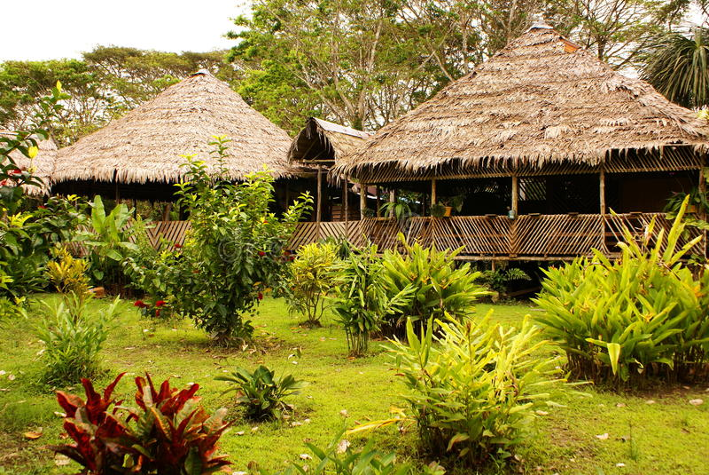 Il Perù, paesaggio peruviano dell'Amazonas. Lo stabilimento indiano tipico delle tribù del presente della foto in Amazon immagini stock