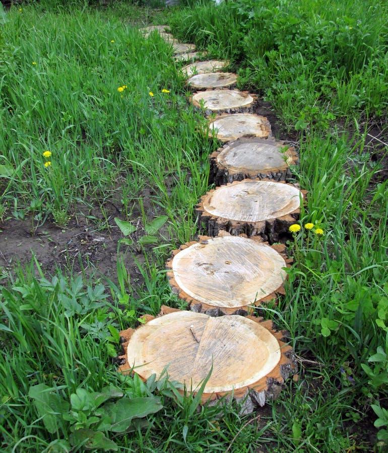 Il percorso è fatto di legno immagini stock libere da diritti