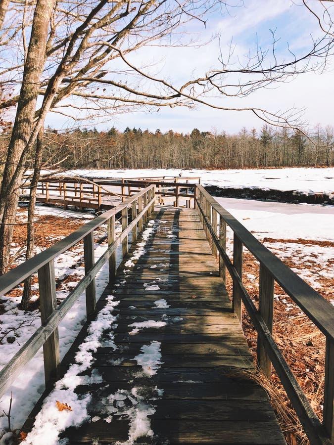 Il percorso del bordo di Rachel Carson National Wildlife immagini stock libere da diritti