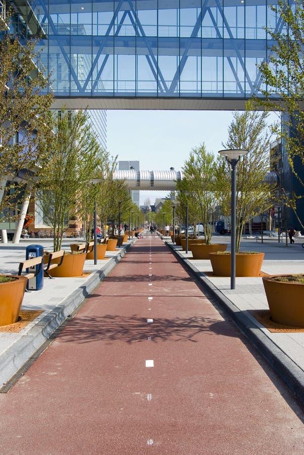 Il percorso futuro della bicicletta fotografia stock