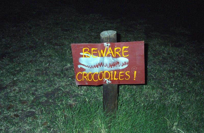 Il pericolo di Croc, Kasane, Botswana immagine stock libera da diritti