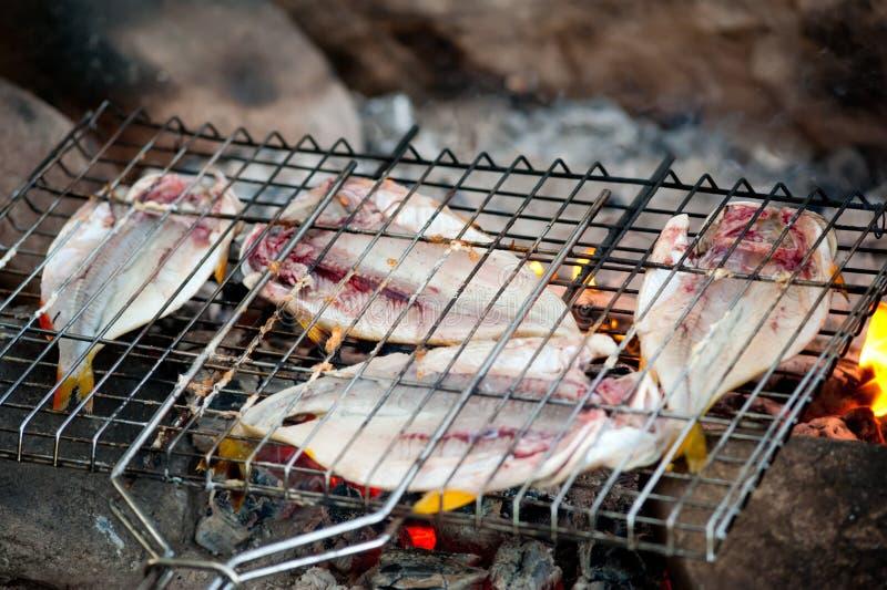 Il pesce è arrostito su fuoco immagini stock libere da diritti