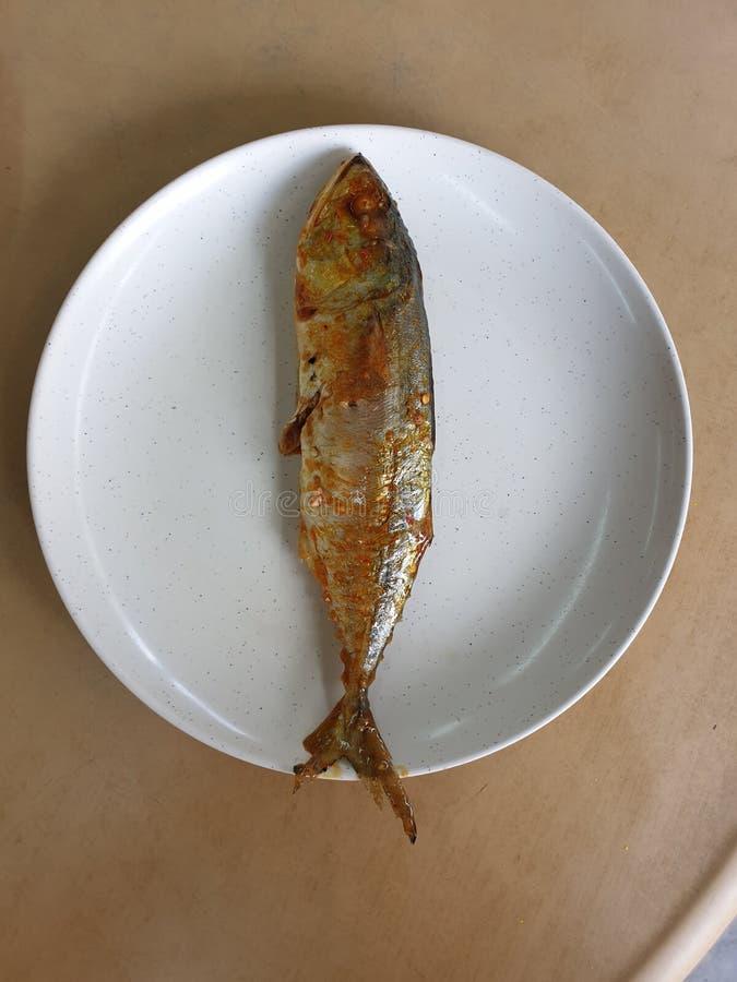 Il pesce del curry fotografia stock libera da diritti