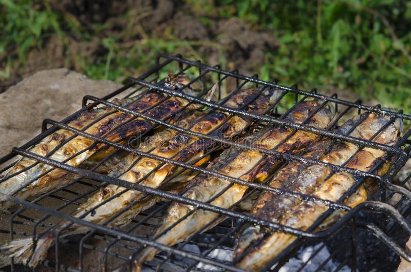 Il pesce dello sgombro si trova sulla griglia ed è cucinato sopra un fuoco aperto Primo piano fotografia stock