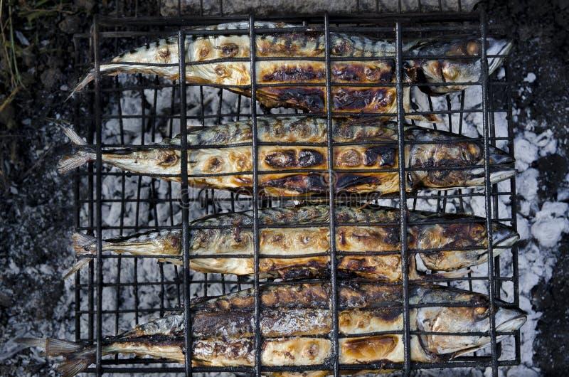 Il pesce dello sgombro si trova sulla griglia ed è cucinato sopra un fuoco aperto Primo piano immagini stock libere da diritti