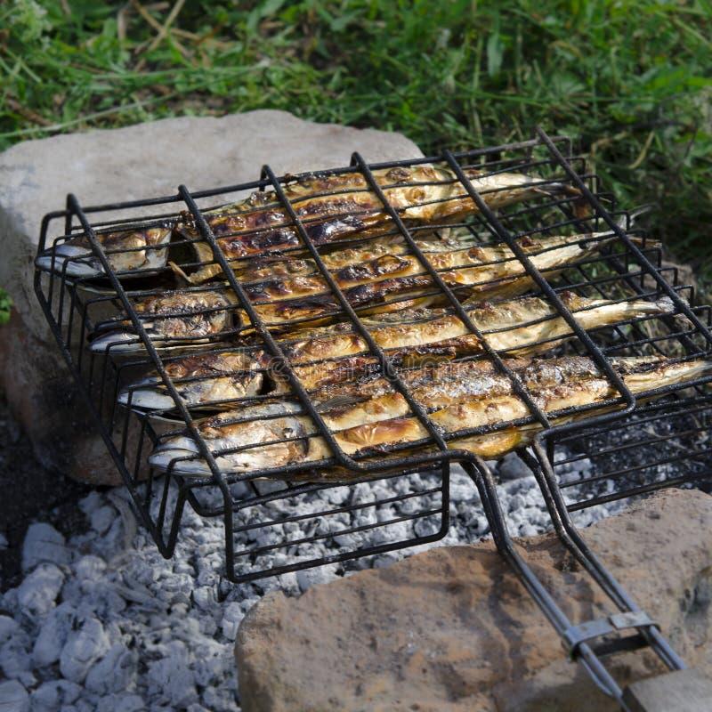 Il pesce dello sgombro si trova sulla griglia ed è cucinato sopra un fuoco aperto Primo piano immagini stock