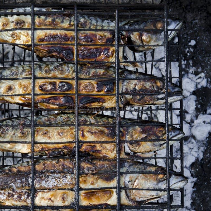 Il pesce dello sgombro si trova sulla griglia ed è cucinato sopra un fuoco aperto Primo piano immagine stock libera da diritti