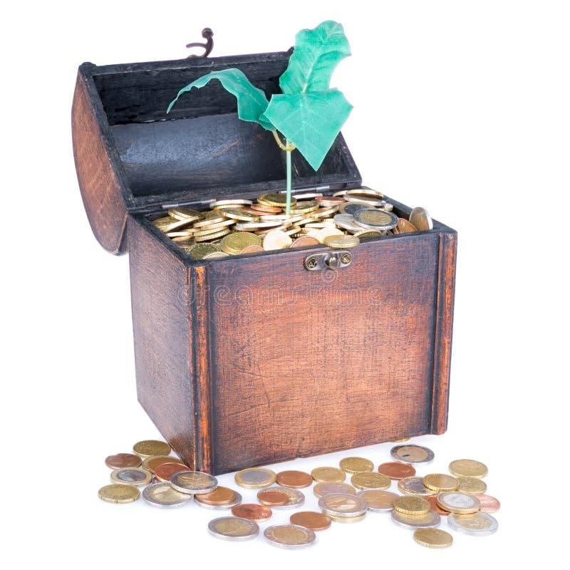 Il petto di legno dei soldi ha riempito di monete e di albero dei soldi fotografia stock