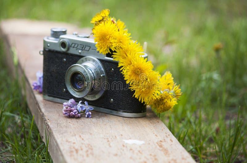 Il photocamera analogico con la corona immagine stock