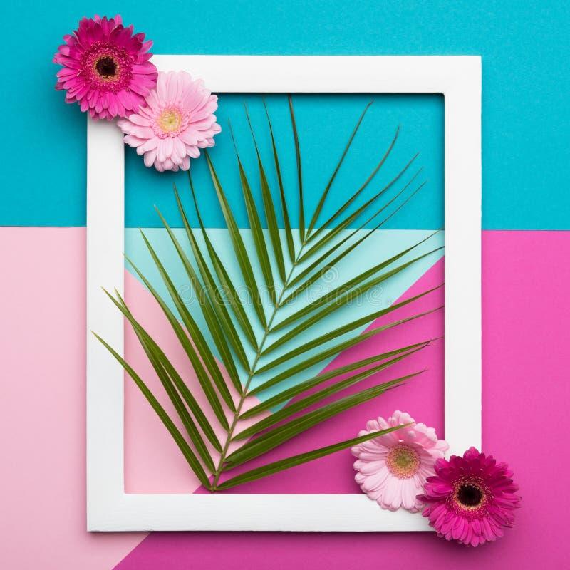 Il piano della cornice pone la cartolina d'auguri geometrica dei modelli di minimalismo Forme della natura e modelli, colori past fotografia stock