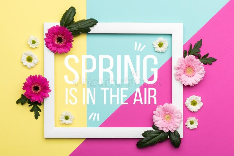 Il piano floreale di tempo di primavera pone la cartolina d'auguri di minimalismo illustrazione vettoriale
