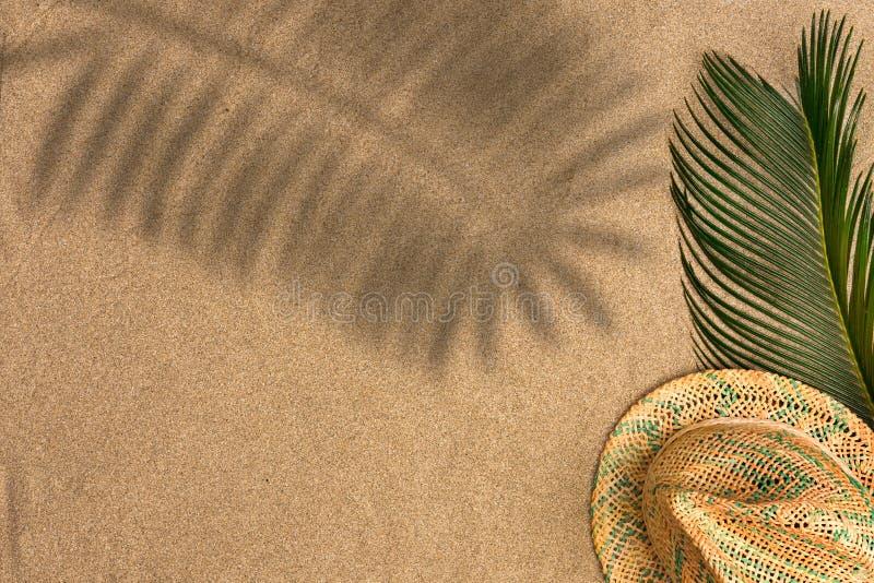Il piano minimalista dell'estate pone con, foglie di palma e cappello di Panama sul fondo della sabbia fotografie stock libere da diritti