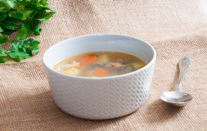 Il piatto bianco con la minestra del pesce fotografie stock