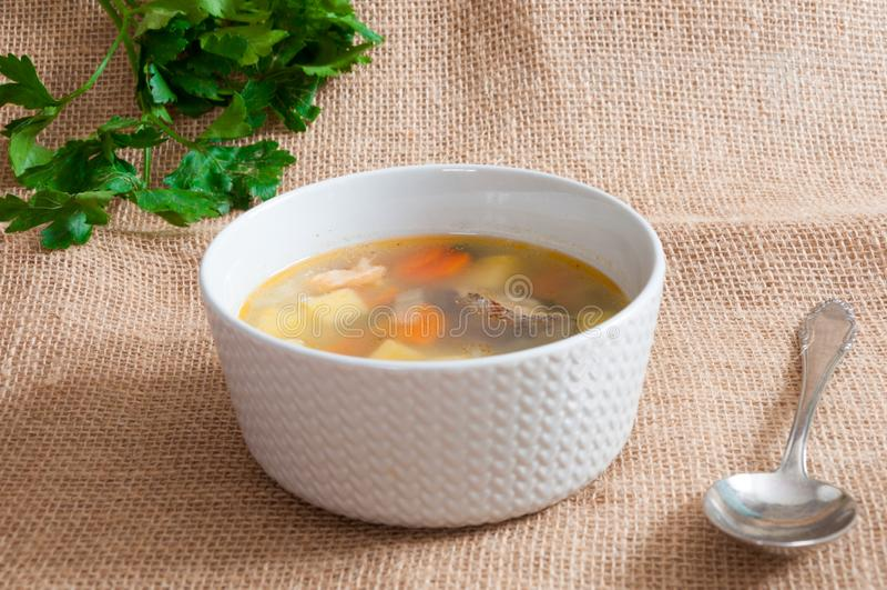 Il piatto bianco con la minestra del pesce immagini stock
