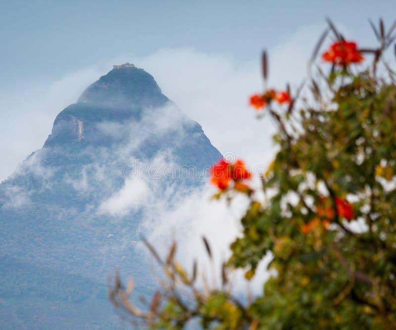 Il picco di Adam della montagna fotografie stock