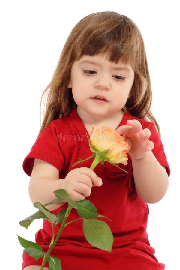 Il piccolo bambino con il colore giallo è aumentato fotografie stock