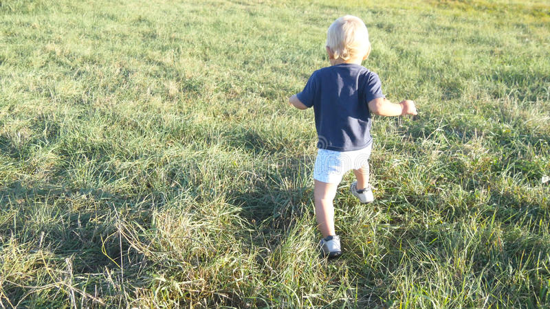 Il piccolo bambino va su erba verde al campo al giorno soleggiato Bambino che cammina al prato inglese all'aperto Bambino che imp immagine stock libera da diritti