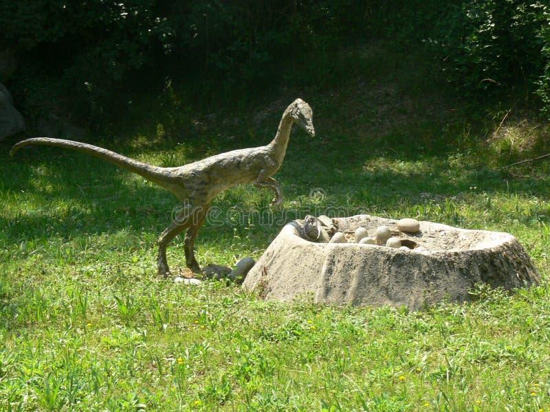 Il piccolo dinosauro predatore deve rubare le uova di dinosauro dal nido nel legno del parco dell'estinzione in Italia fotografia stock libera da diritti