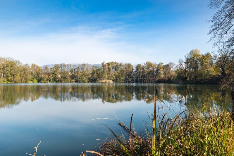 Il piccolo lago ha chiamato lo stagno o la cava delle fornaci alla palude di Brabbia della riserva naturale fotografia stock