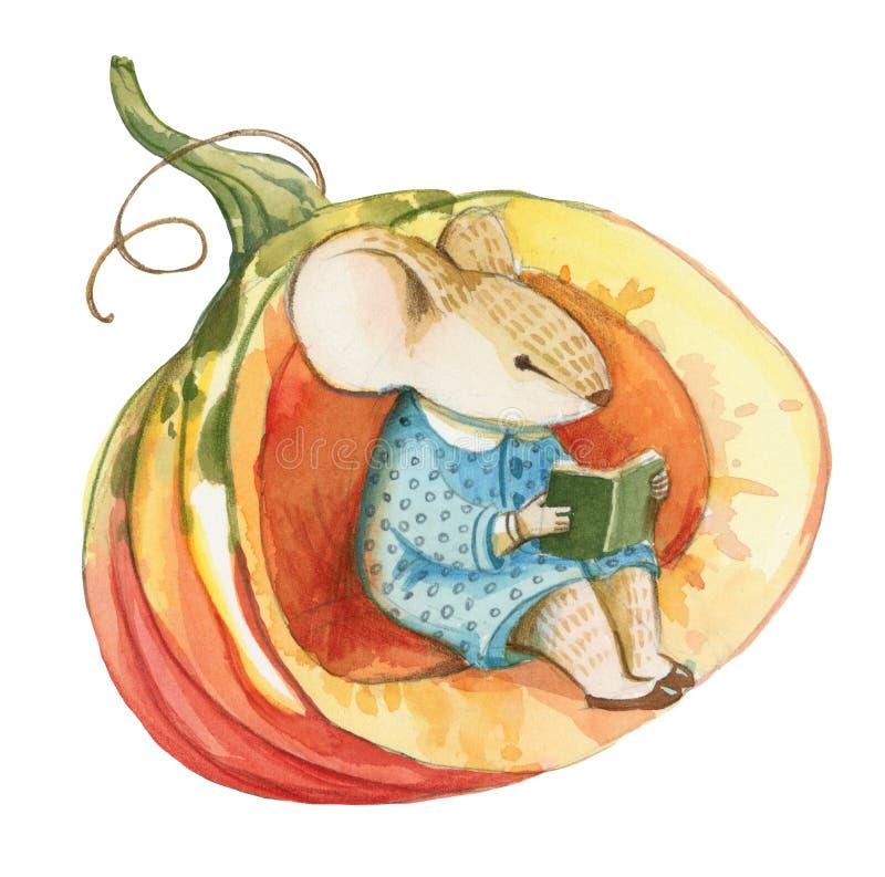 Il piccolo topo grigio in vestito blu si siede in rosso la zucca illustrazione vettoriale