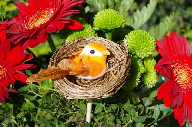 Il piccolo uccello arancio in un nido fra la molla fiorisce immagine stock
