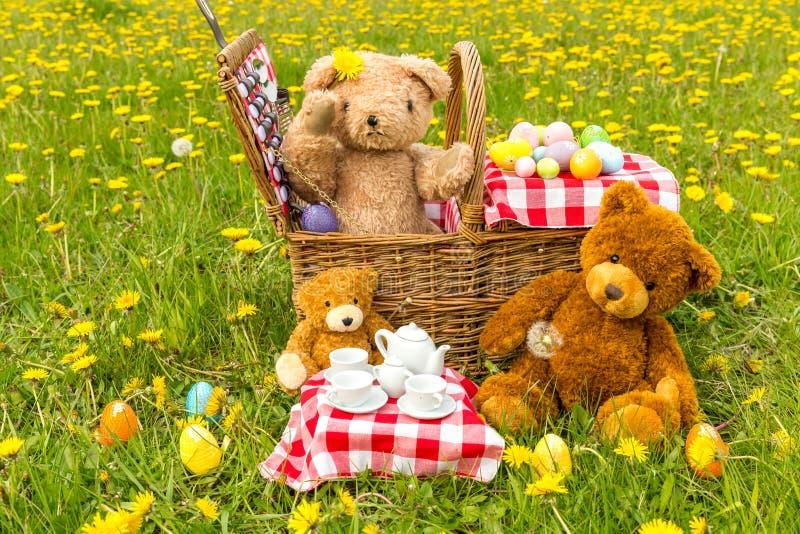 Il picnic dell'orsacchiotto di estate con i denti di leone gialli luminosi fotografia stock libera da diritti