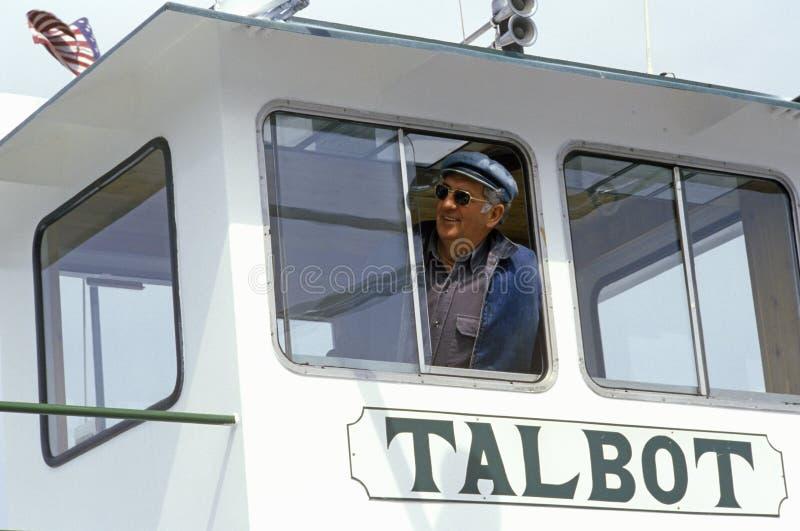 Il pilota del traghetto di Oxford che guarda fuori la finestra del suo ponte, baia di Chesapeake, Maryland immagini stock