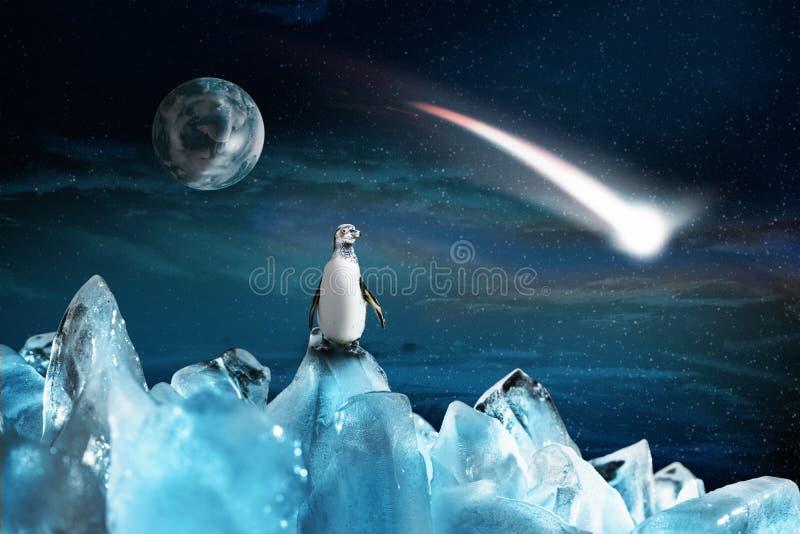 Il pinguino artico solo sta su una montagna ghiacciata ed esamina una cometa di caduta, illustrazione fotografia stock