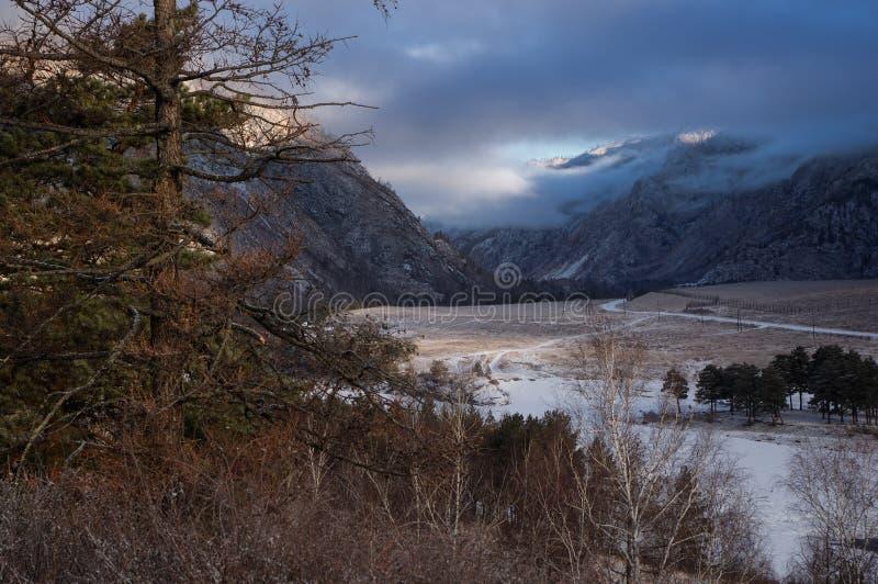 Il pino e l'erba asciutta sui precedenti di un fiume con una strada attraverso una valle della montagna all'inverno albeggiano ne immagini stock