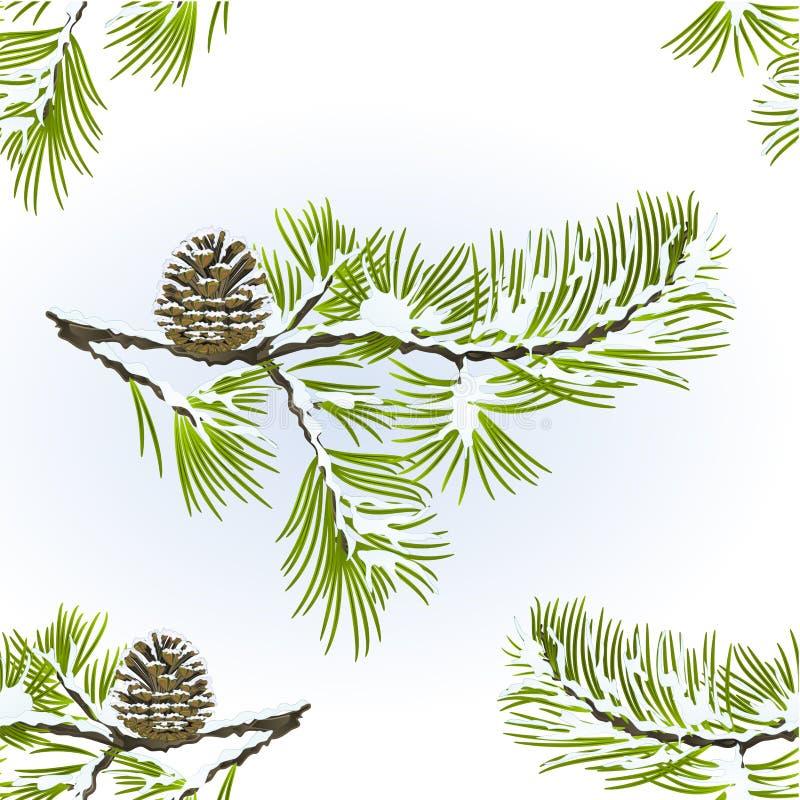 Il pino senza cuciture di struttura e il vitage nevoso dello sfondo naturale dell'inverno del ramo della pigna vector l'illustraz illustrazione di stock