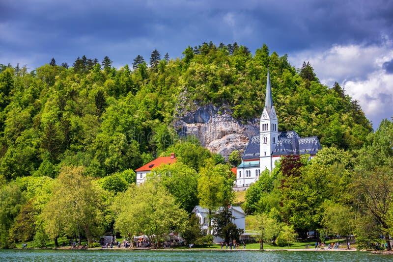 Il pittoresco della chiesa di parrocchia di St Martin sulla collina dal lago sanguinato della Slovenia La chiesa di St Martin sul immagini stock libere da diritti