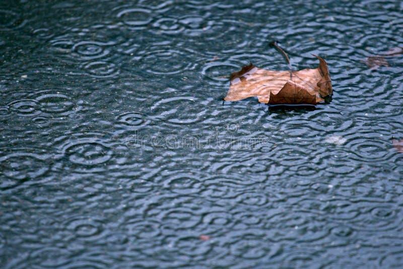 Il pleut de nouveau image libre de droits