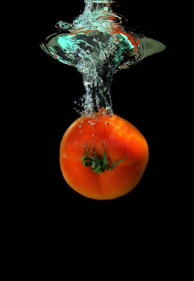 Il pomodoro sta cadendo nell'acqua fotografia stock libera da diritti