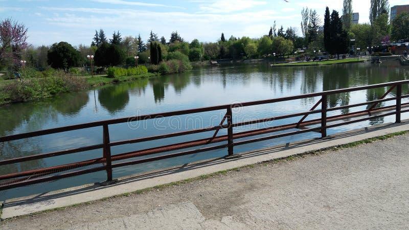 Il ponte del lago pianta la bellezza di legno degli alberi dell'acqua fotografie stock