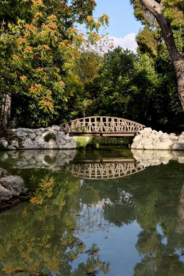 Il ponte di legno nel parco immagine stock libera da diritti