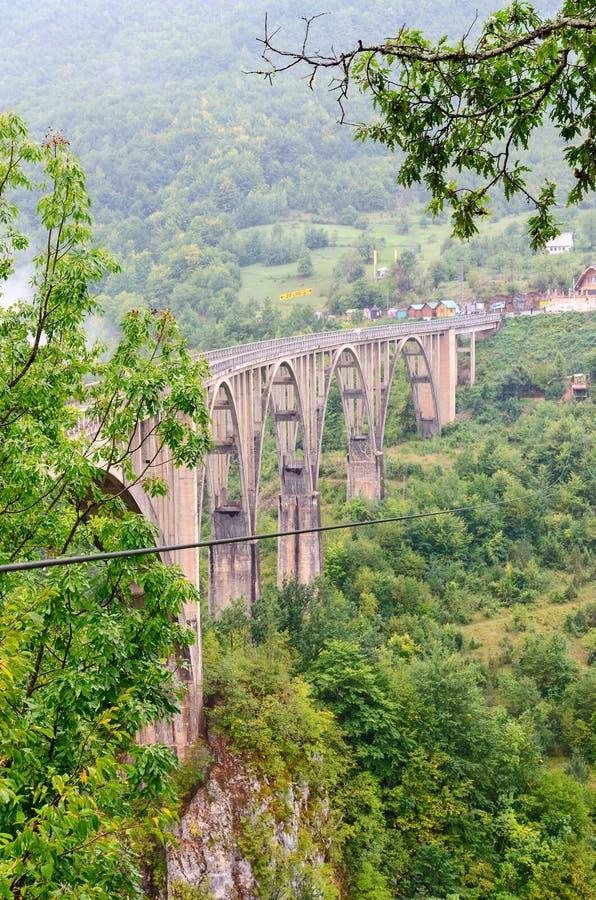 Il ponte Dzhurdzhevicha, Tara River Canyon, Montenegro fotografie stock libere da diritti