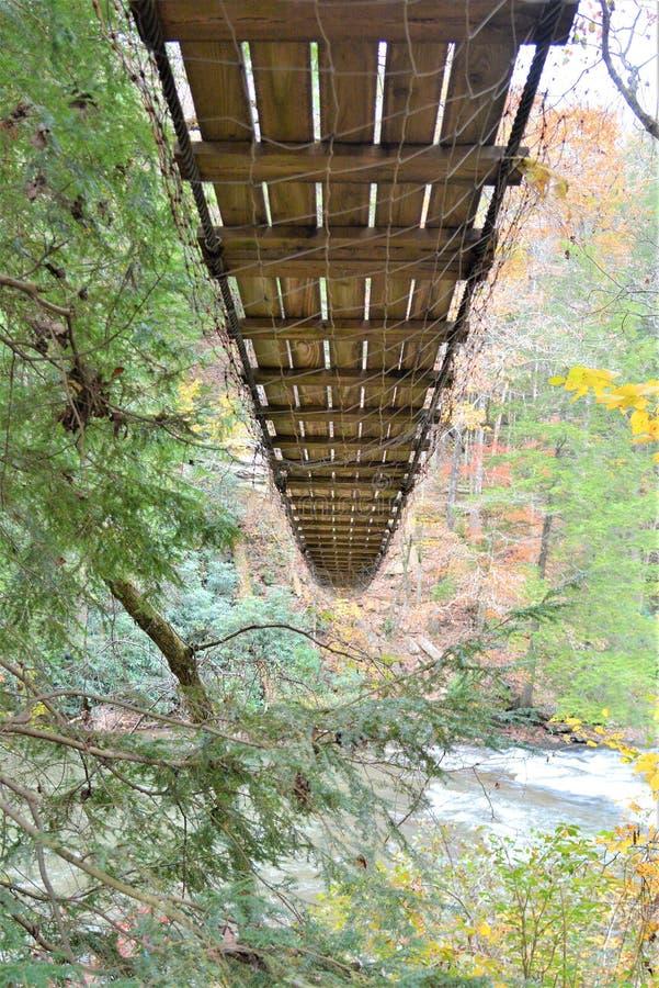 Il ponte girevole della corda attraversa il fiume con un fondo di colore di caduta fotografia stock libera da diritti
