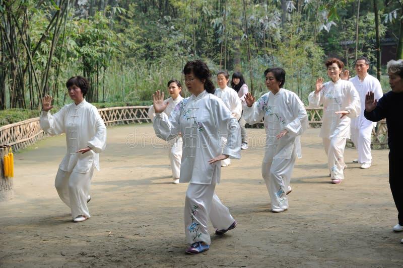 Il popolo cinese sta giocando il taiji fotografia stock libera da diritti