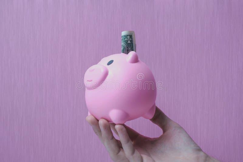 Il porcellino salvadanaio conserva il fondo rosa del dollaro dei soldi strutturato fotografia stock libera da diritti