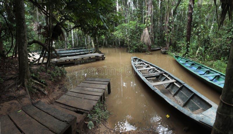 Il porto della foresta pluviale sul lago Sandoval vicino a Puerto Maldonado, Amazon Perù fotografia stock