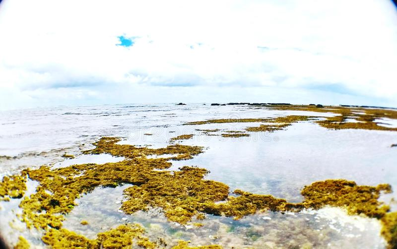 Il Praia fa il Forte fotografia stock