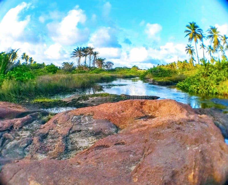 Il Praia fa il Forte fotografia stock libera da diritti
